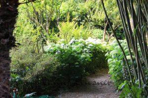 Hortensienallee
